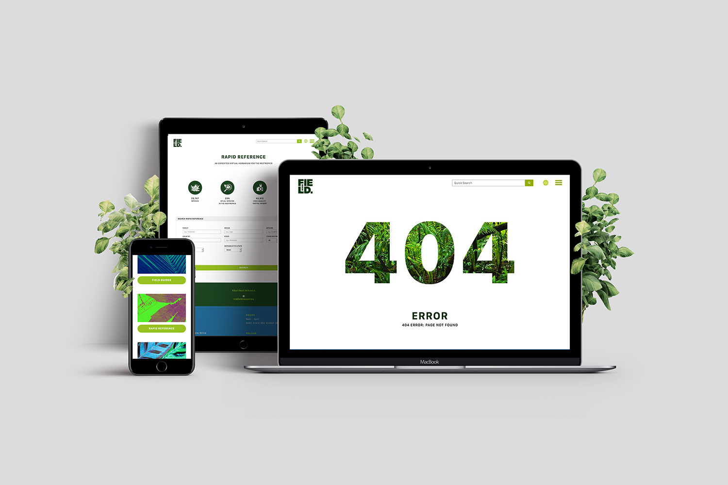 Homepage (mobile), 404, Rapid Reference