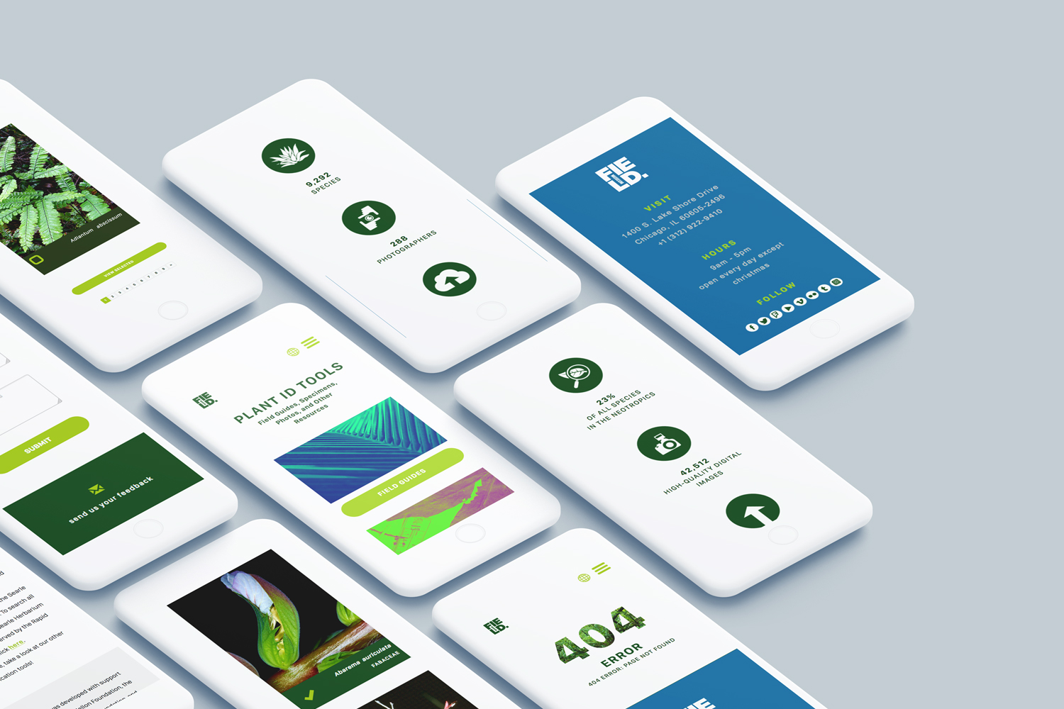 Several iPhone mock-ups in perspective layout.