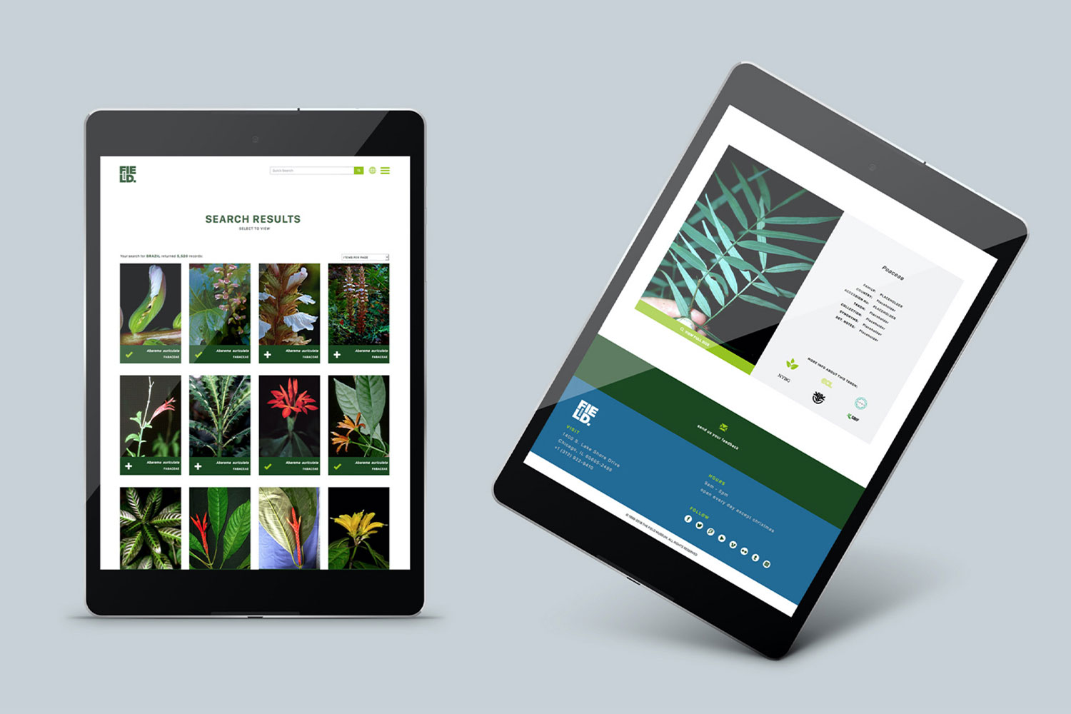 Landing pages for the search results and specimen details